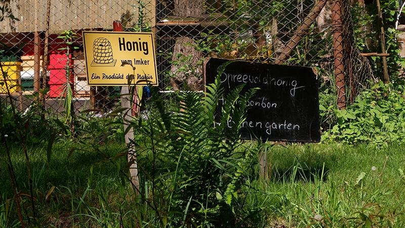 Honig aus dem Spreewald